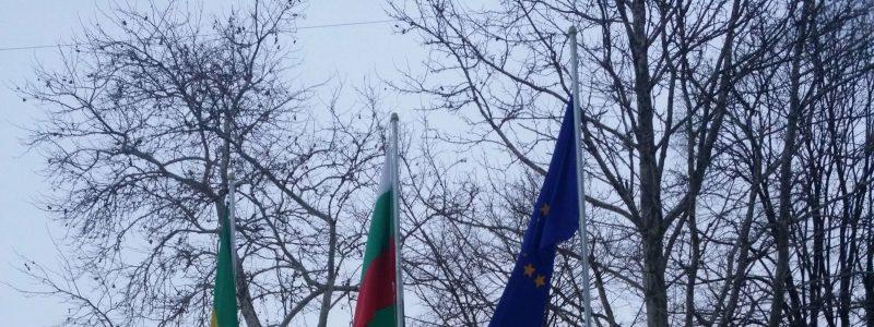 flags-min